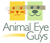 Animal Eye Guys